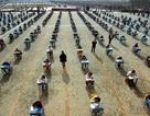 Sinh viên châu Á gian lận, đại học Mỹ làm ngơ