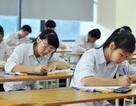 """Bí quyết giải """"độ khó"""" bài thi tiếng Anh kỳ thi THPT quốc gia"""