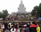 Hàng nghìn người về khai hội Khán hoa mẫu đơn chùa Phật Tích