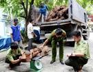 """Buôn hơn 5 tấn gỗ Ngọc Am, """"trùm gỗ"""" bị bắt"""
