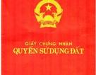 """Quảng Ninh: Hàng loạt cơ quan nhà nước câu kết """"vẽ"""" ra nhiều """"sổ đỏ"""" trái pháp luật"""
