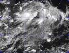 """""""Siêu bão"""" suy yếu vẫn gây mưa to ở miền Bắc"""