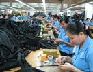 Phó Thủ tướng: Đẩy mạnh xuất khẩu lao động