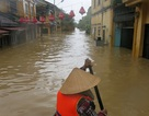 Việt Nam trong top 10 quốc gia ảnh hưởng nặng nề nhất do biến đổi khí hậu