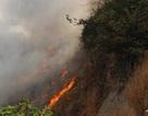 Hỏa hoạn thiêu rụi 5 căn nhà, đe dọa đường dây 500kV