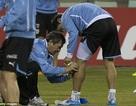 Luis Suarez chấn thương, có nguy cơ lớn mất World Cup