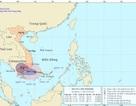 Bão số 1 giật cấp 10 hướng về Ninh Thuận - Vũng Tàu