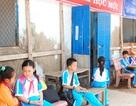 Trường chờ sập nơi cửa biển Cà Mau