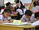 Đà Nẵng: Tưng bừng Ngày hội học sinh tiểu học