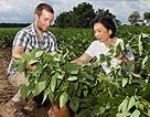 Nhà khoa học nữ gốc Việt khai sinh đậu nành biến đổi gen ở Mỹ