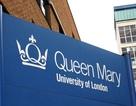 Gặp gỡ đại diện tuyển sinh ĐH Queen Mary và ĐH City, London, vương quốc Anh