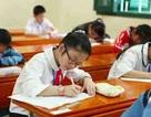 """Olympic Tiếng Anh Tiểu học 2014: Bài đọc hiểu phần thi trắc nghiệm """"thử thách"""" thí sinh"""