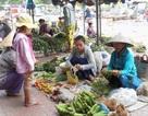 Nữ sinh bán rau với ước mơ giảng đường sắp vụt tắt