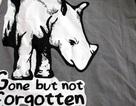 Tê giác Java tại Việt Nam đã thực sự tuyệt chủng