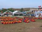900 sinh viên xếp chữ Việt Nam khổng lồ trên đảo Lý Sơn