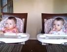 Clip cặp song sinh 11 tháng tuổi lắc lư theo nhạc gây sốt mạng