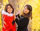 Thiếu nữ Bắc Kinh tạo dáng giữa đại lộ lá vàng rực rỡ