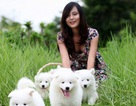 Chăm sóc thú cưng - Nghề mới của bạn trẻ yêu động vật
