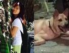 Bỏ tiền cứu chú chó, cô gái Hà Nội được dân mạng ngợi ca