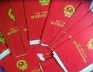 Nhiều uẩn khúc trong vụ kê biên tài sản ở phường Nguyễn Cư Trinh