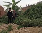 """Chính quyền xã """"thách thức"""" UBND huyện Yên Phong"""