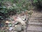 Huyện Quốc Oai giải trình tình trạng lộn xộn ở di tích chùa Thầy