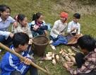 Trẻ em vùng cao oằn mình kiếm manh áo ngày giáp Tết