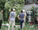 Lời kêu cứu khẩn cấp của 5 gia đình ở xã Đại Mỗ