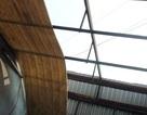 TPHCM: Nhà tốc mái, cây gãy đổ... vì mưa lớn