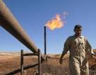 """Giá dầu tiếp tục """"nổi sóng"""""""