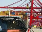 Kinh tế Trung Quốc vẫn xấu đi nhanh chóng bất chấp kích cầu