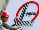 Doanh nghiệp Trung Quốc: lớn nhưng không mạnh