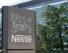 """Đến lượt Nestle phải thu hồi sản phẩm vì thịt bò """"hóa"""" thịt ngựa"""