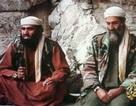 Người phát ngôn của Osama Bin Laden bị bắt