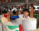 Trung Quốc: Gạo chứa chất gây ung thư bán tràn lan
