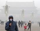 """Trung Quốc: Hầu hết thành phố loại 1 """"không thể sống nổi"""""""