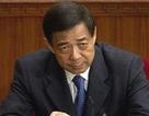 Trung Quốc sẽ tường thuật trực tiếp phiên xử Bạc Hy Lai?