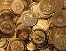 "Sau Liberty Reserve, ""đại gia"" tiền ảo Bitcoin bị ""sờ gáy"""