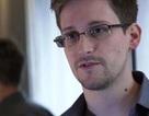 Tình báo Mỹ tính ân xá để Snowden ngừng tiết lộ bí mật