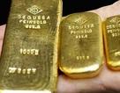 Giá vàng tuần tới còn có thể giảm tiếp