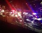 Mỹ: Xả súng điên loạn tại California, 7 người chết