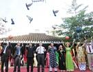 Đà Nẵng: Giỗ Tổ, rộn ràng lễ hội đình làng