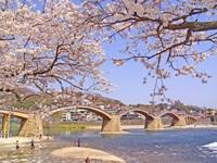 Những điểm đến hấp dẫn bậc nhất tại tỉnh Yamaguchi, Nhật Bản