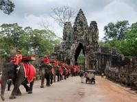 Du ngoạn hai quốc gia Phật giáo đầu xuân