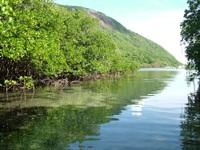 6 điều thú vị nên trải nghiệm khi lần đầu đến Côn Đảo