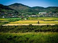Mùa thu thơ mộng ở Triều Tiên qua góc máy du khách Việt