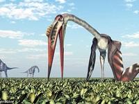 """""""Sát thủ trên không"""" to như máy bay, ăn thịt cả khủng long từng tồn tại trên Trái đất"""