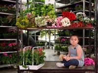 Đến thăm chợ hoa lớn nhất thủ đô Paris