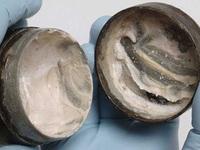 Phát hiện hộp kem dưỡng trắng da... 2000 năm tuổi