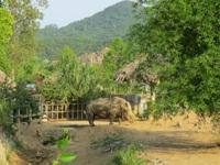 Khu du lịch sinh thái Diễm Lâm: Nơi trải nghiệm cung bậc cuộc sống